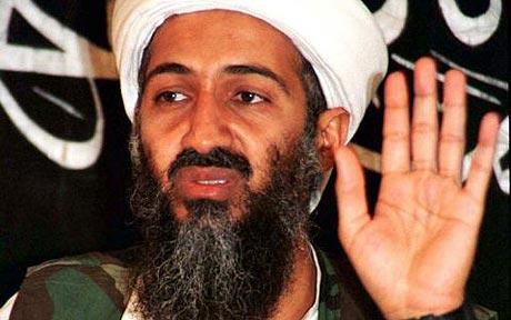 Osama Bin Ladan Related News. Osama bin Laden News