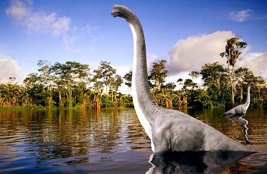 http://www.allwelike.com/wp-content/uploads/2011/06/Diplodocus-Dinosaur-Picture-In-Water.jpg